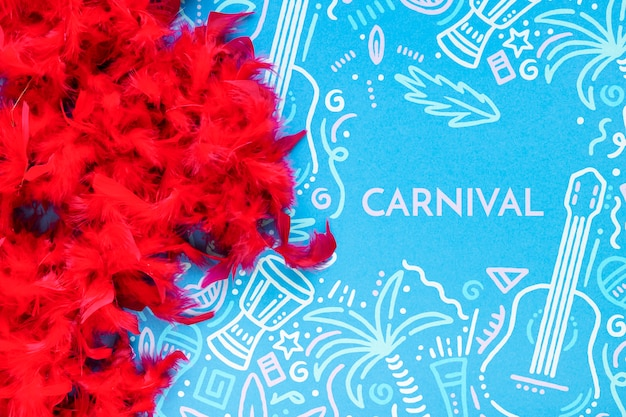 Top view of carnival red feathers