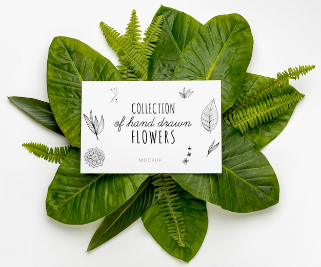 Top view collection of hand drawn flowers with mock-up