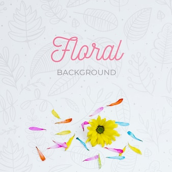 Top view elegant floral background