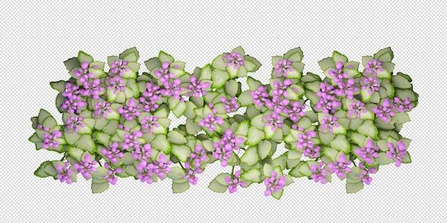 고립 된 3d 렌더링에서 상위 뷰 꽃 디자인