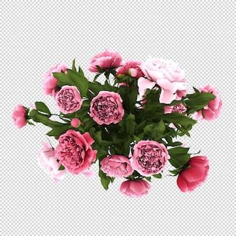 Вид сверху цветы в вазе в 3d-рендеринге изолированы