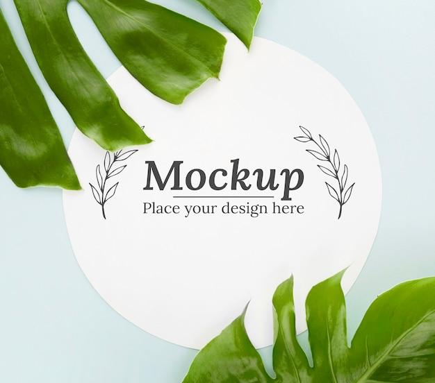 Composizione di foglie verdi vista dall'alto con mock-up