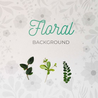 Top view green leaves floral background