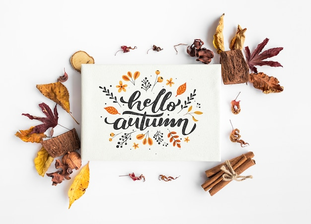Top view of hello autumn paper and colorful leaves