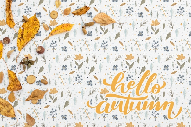 Top view of hello autumn with leaves