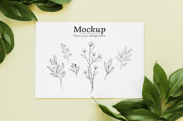 上面図の葉とカードの配置