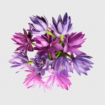 Top view lotus flowers in 3d rendering isolated