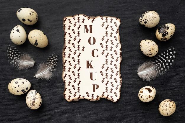 Vista dall'alto del telaio mock-up con le uova
