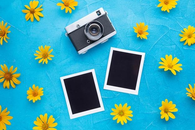 カメラと黄色のカモミールの写真の平面図