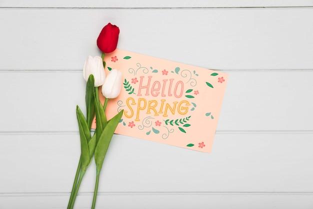 봄 튤립과 카드의 상위 뷰