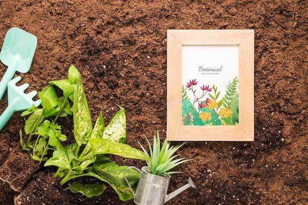 Вид сверху рамы на почве с растениями и инструментами