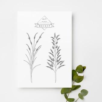 植物と葉のモックアップの上面図