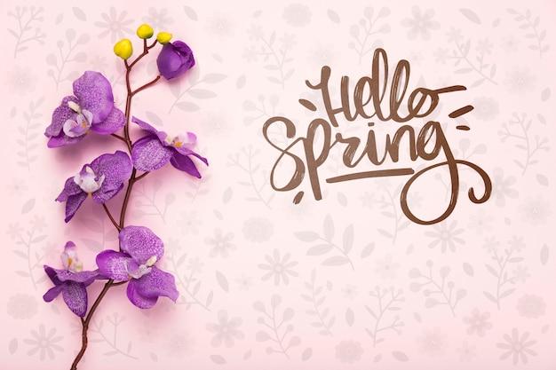 보라색 봄 난초의 상위 뷰