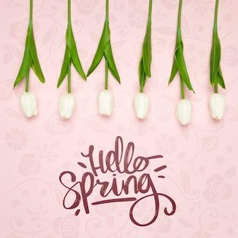하얀 봄 튤립의 상위 뷰