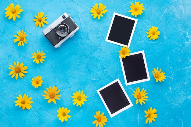 Top view of photographs and camera with yellow chamomile