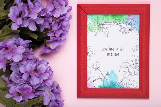 Top view of purple phlox and frame