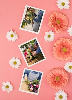 Top view of spring daisies with photos and chamomile
