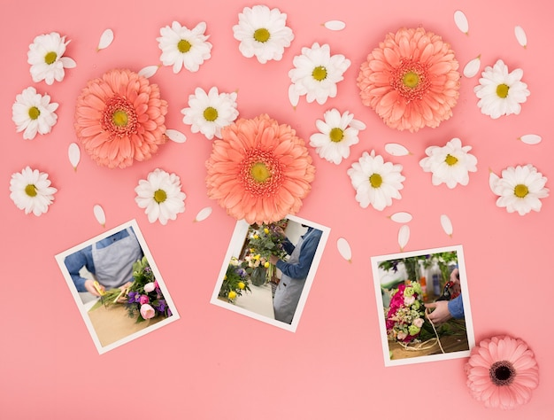 Top view of spring daisies with photos