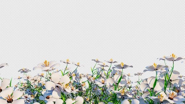 투명 꽃 배경