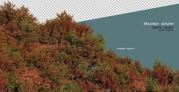 가을 산의 나무와 식물