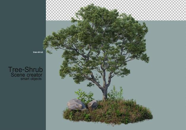 나무와 관목 다양한 방식으로 배열되어 작은 정원을 형성하는 풀 식물