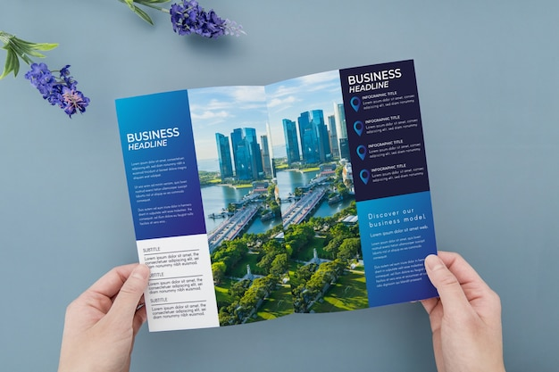 Trifold brochure concept mock-up