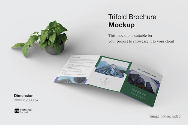Trifold brochure mockup design isolated