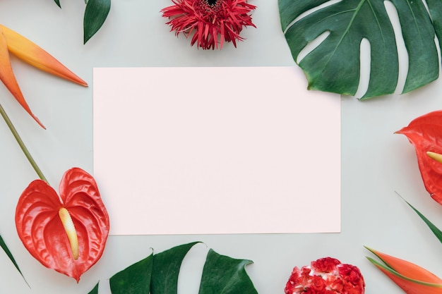 Тропический ботанический с макетом карты