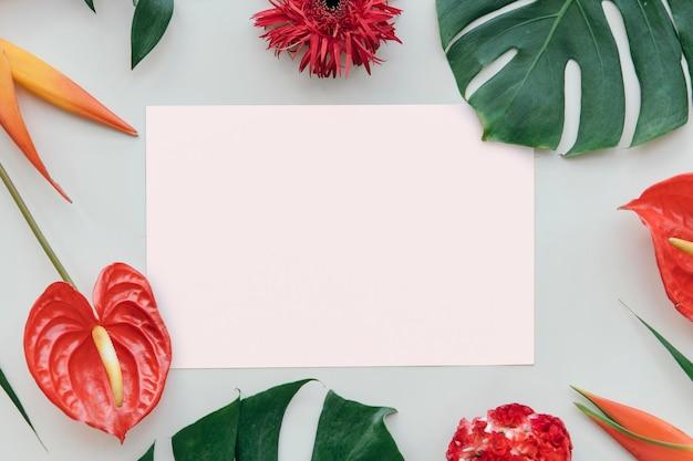 Tropical botanical with a card mockup