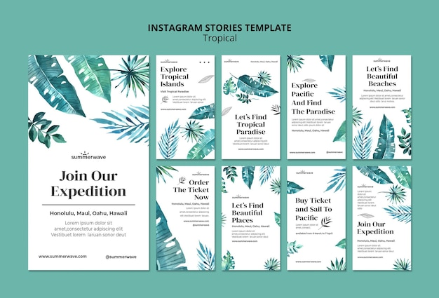 Tropical design style instagram stories template