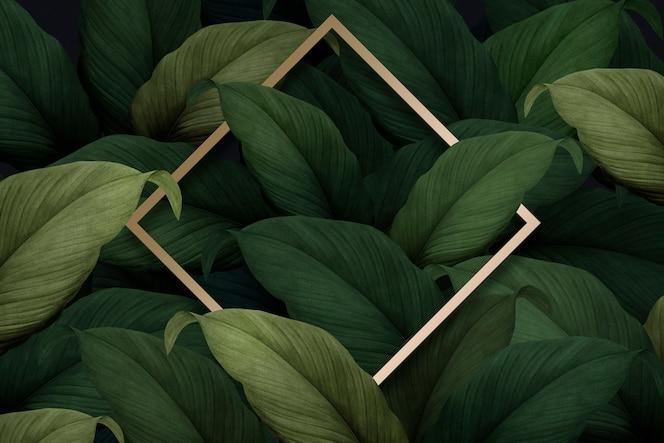 Tropical foliage background