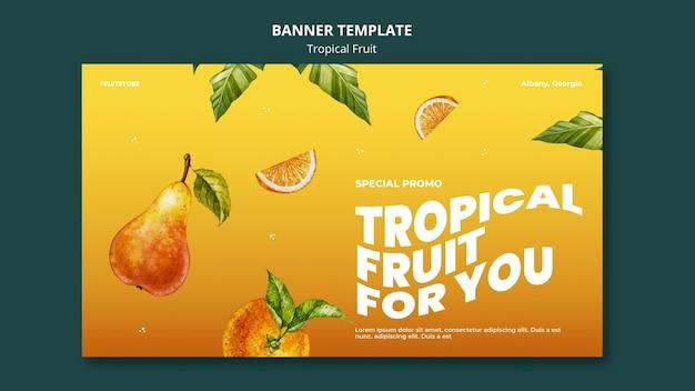 열대 과일 배너 서식 파일