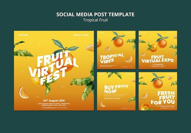 열대 과일 소셜 미디어 게시물