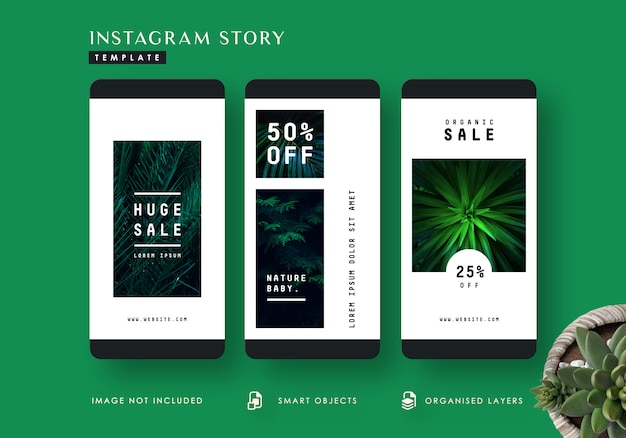 Tropical leaves instagram stories template