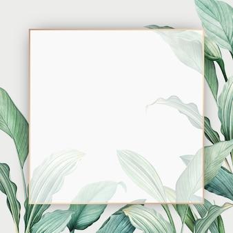 열대 낙원 카드