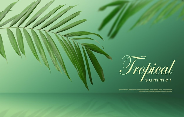 Tropical summer sale background of palm leaves on a green background