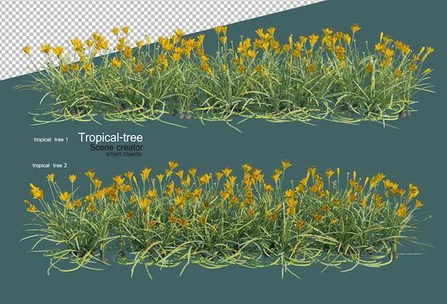 熱帯の木々と花