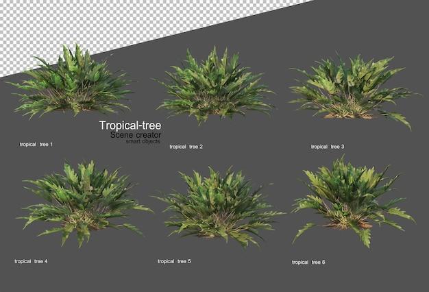 3d 렌더링의 열대 나무와 식물