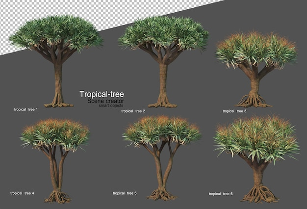 Tropical trees and plants in 3d rendering