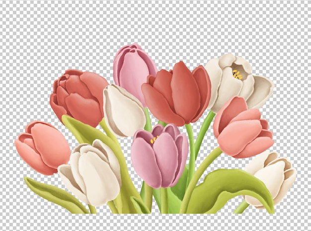 Tulips bouquet hand drawn illustration
