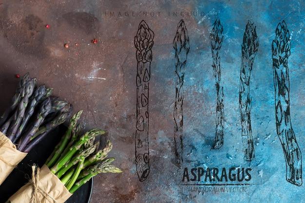 Две грозди выращенных в домашних условиях сырых органических пурпурных и зеленых копий спаржи для приготовления здоровой вегетарианской диетической пищи на темной каменной поверхности. копирование пространства.