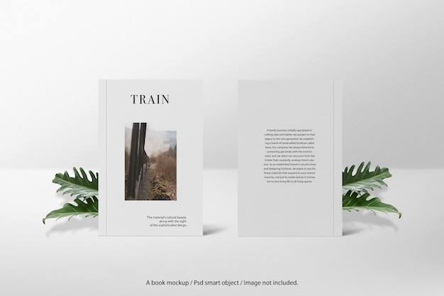 Two cover book mockup