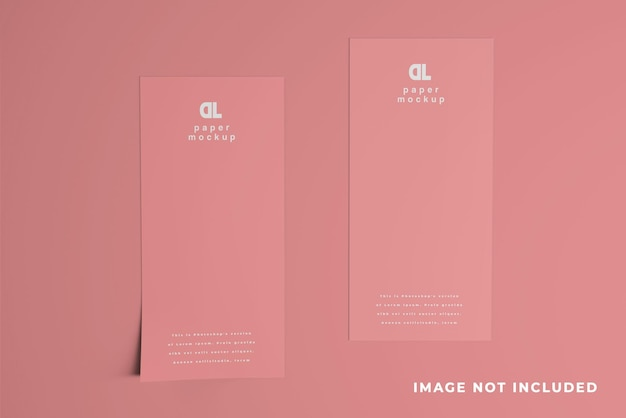 Два dl flyer clean mockup design