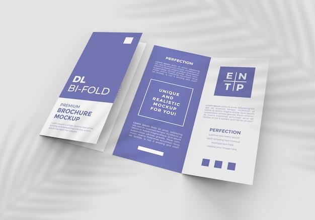 Два макета для двухслойной брошюры размера dl