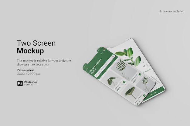 Визуализация дизайна макета двух экранов