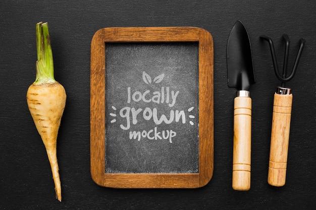 調理器具と地元産の野菜のモックアップ