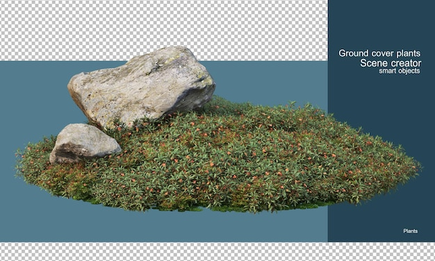 관목 정원의 다양한 암석