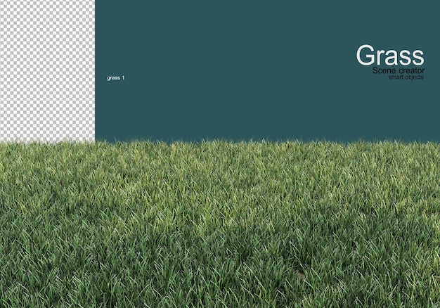 Variety of grass and gravel design