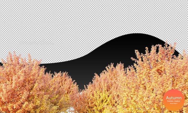 다양한 가을 나무 가을 나무 꼭대기