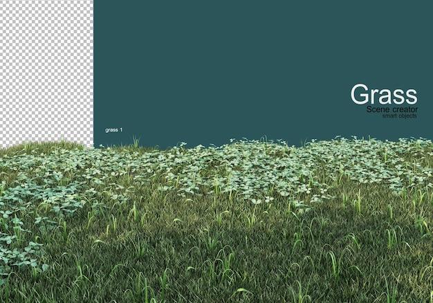 さまざまな草や砂利のデザイン